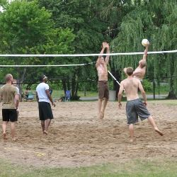 Adult Sports - sand volleyball
